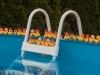 Sécurité et protection des piscines hors-sol